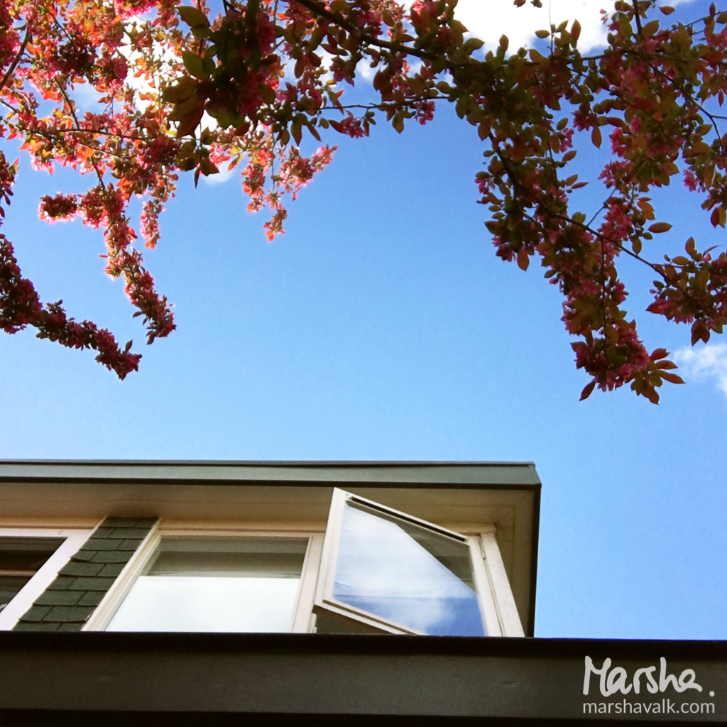 Marsha Valk | Artful Adventures: 1 Home